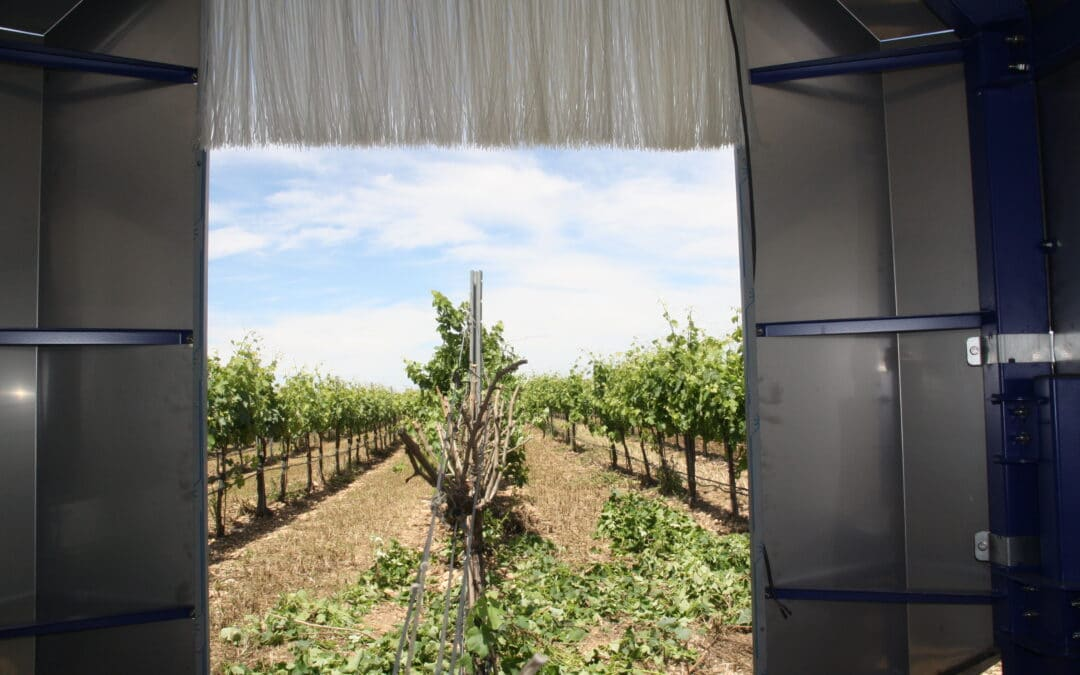 ROBOTRIM the automatic pruning system for vines