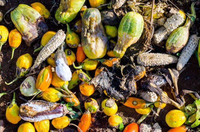 Valuation of agri-food waste